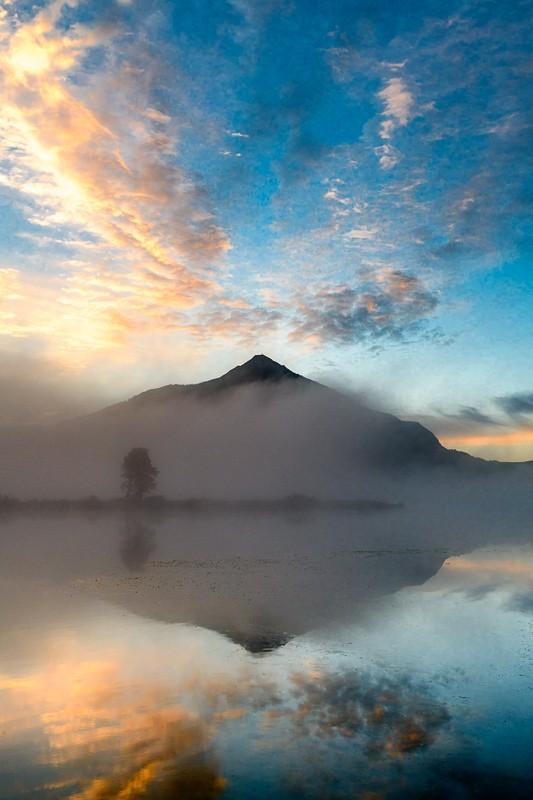 """""""Foggy Sunrise"""""""